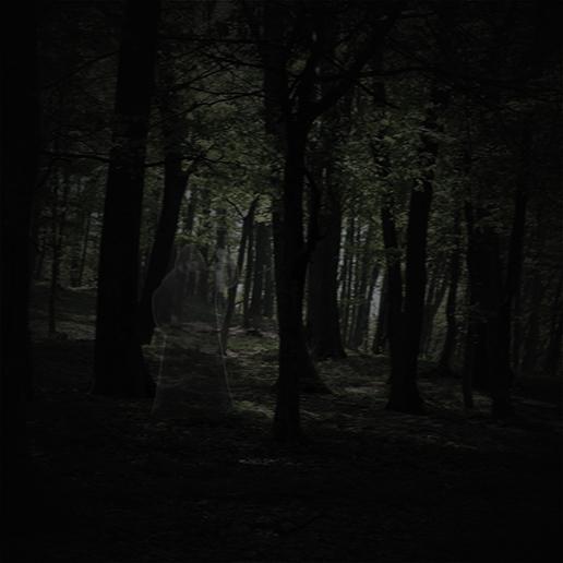 En hemsökt skog med en lyktgubbe gömd mellan träden