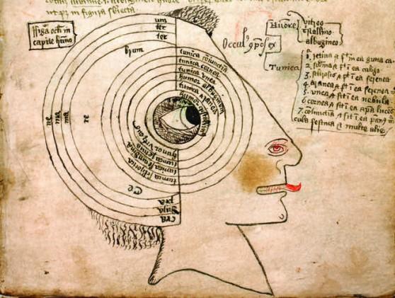 Medeltida bild av de sex sinnena