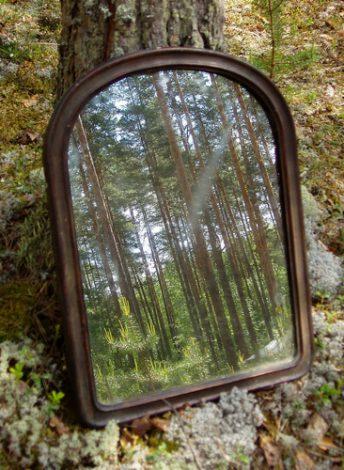 En spegel i en skog